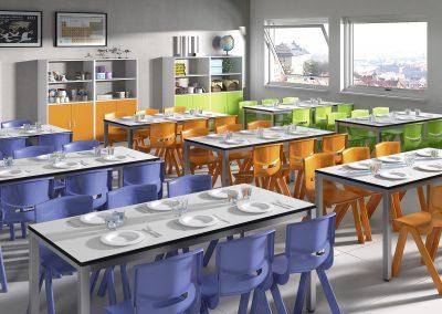 MIRPLAYschool12.17