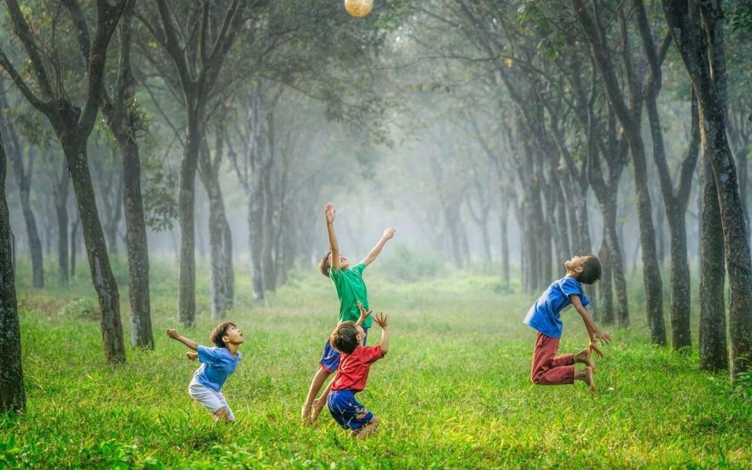 5 actividades para seguir aprendiendo este verano